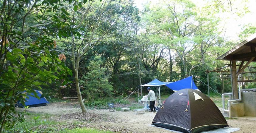 堀越キャンプ場