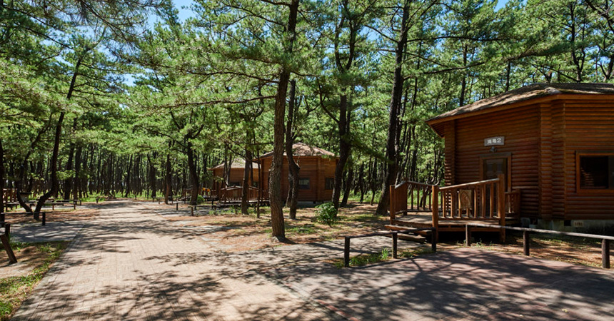 くにの松原キャンプ場