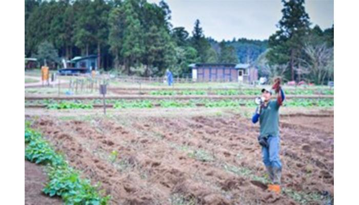 収穫体験THE-FARMグランピングサウナを楽しもう