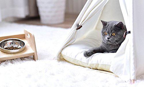 ティピーテント2ネコ用テント家キャンで癒されたい
