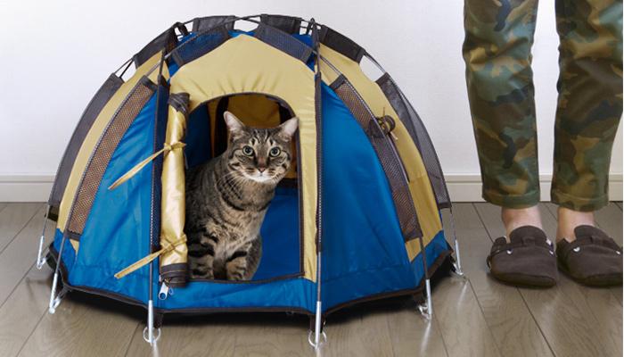 ドデカヒードロンテント1ネコ用テント家キャンで癒されたい