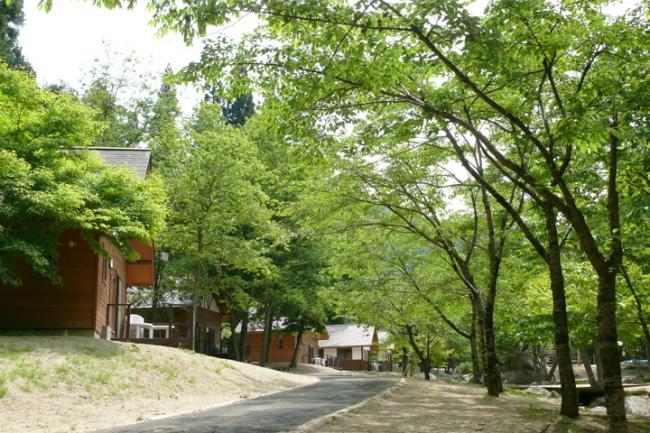 台風19号被害から不動尊公園キャンプ場再開2