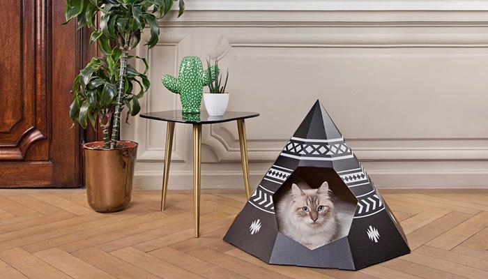 段ボール猫ハウス1ネコ用テント家キャンで癒されたい