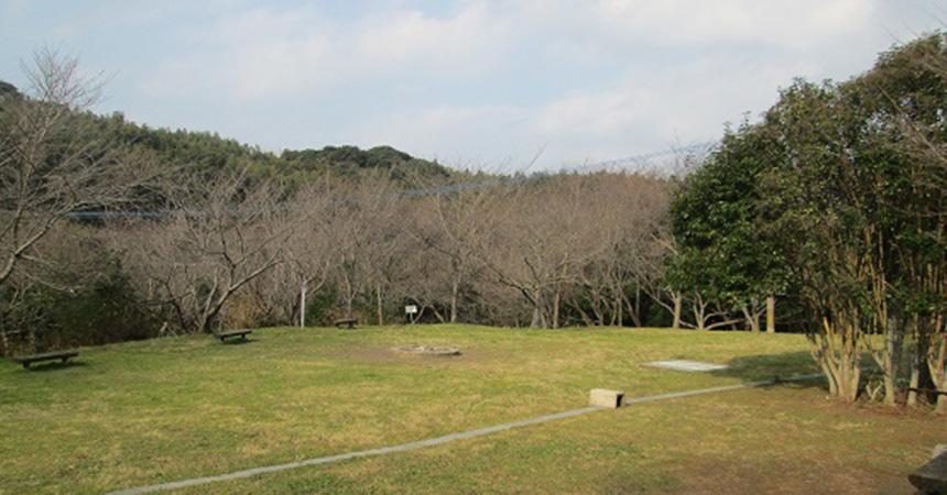 北九州市立しょうぶ谷キャンプ場